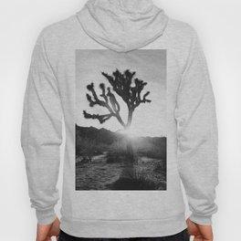 Joshua Tree with Sun Flare Hoody