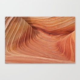 Above The Wave Canvas Print