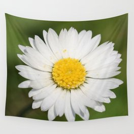 Closeup of a Beautiful Yellow and Wild White Daisy flower Wall Tapestry