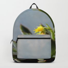 Succulent plant with little yellow flower Backpack