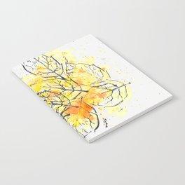 fall 1 Notebook