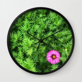 Top view of Yellow cosmos or Sulfur cosmos bush with a blooming pink Zinnia flower. Wall Clock