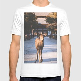 A cute Japanese Shika Deer standing in front of a shrine in Nara  奈良の鹿 T-shirt