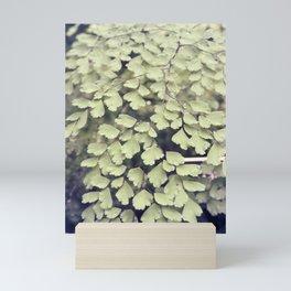 Maidenhair tree leaves Mini Art Print