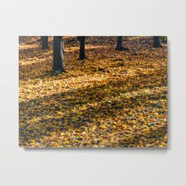 Brown Dried Autumn Leaves Background In Fall Season, Autumn Season, Fall Forest, Falling Leaves Metal Print
