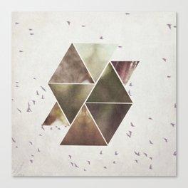 The Birds Overhead Canvas Print