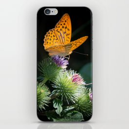 silver-bordered fritillary iPhone Skin