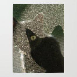Cat Picatsso Poster