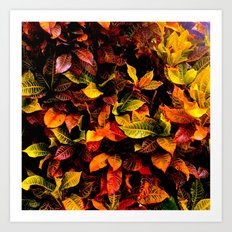Red, Yellow, Green Art Print