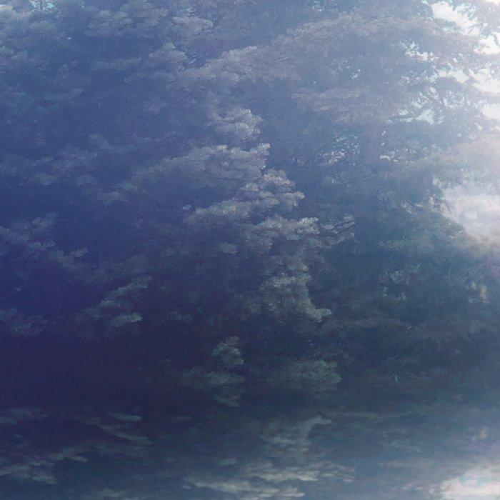 Serene reflections Leggings