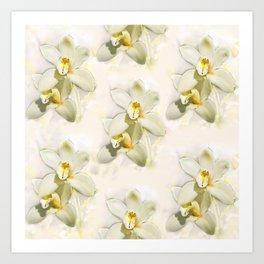 White Orchids Art Print
