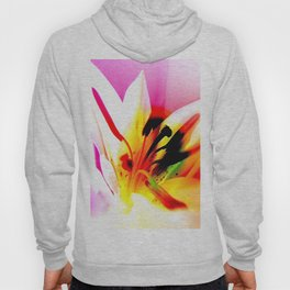 Abstract Of The Lily Hoody