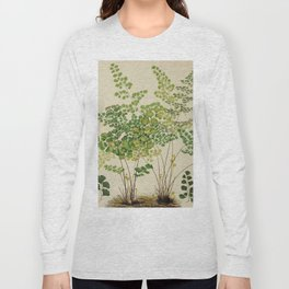 Maidenhair Ferns Long Sleeve T-shirt