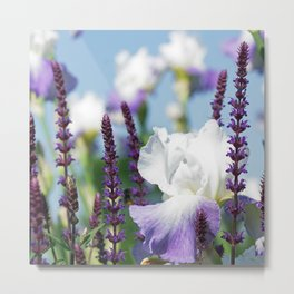 Summer Garden with Blue sky and lavender Metal Print