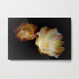 Sun Blooming Cactus Metal Print