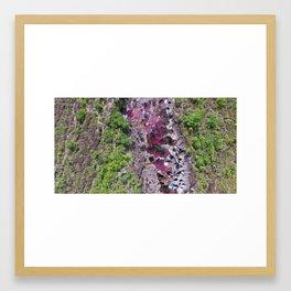 Caño Cristales: The River of Seven Colors Framed Art Print