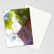 the softness of our sunlight Stationery Cards