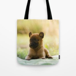 Malinois puppies in the soap blowing game Tote Bag