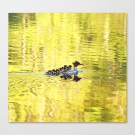 Bird's Family Happiness Canvas Print