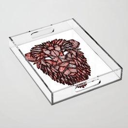 Lion Mask Acrylic Tray