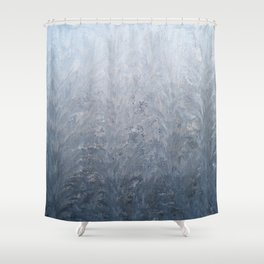 Jack Frost painted my window 4 Shower Curtain