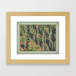 AUTUMN BLUEBERRIES IN OPEN ALPINE FOREST NORTH CASCADE RANGE Framed Art Print