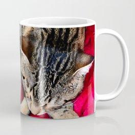 Cute Tabby Cat napping Coffee Mug
