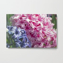 Spring Flowers Series 25 Metal Print