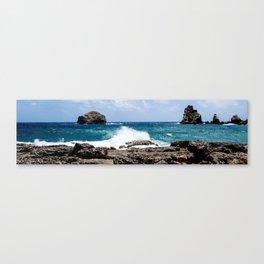 Sky, sea, and land Canvas Print