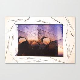 strange land Canvas Print