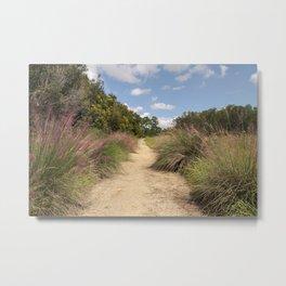 Wilderness Preserve Metal Print
