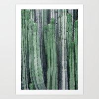 Cactus 11 Art Print