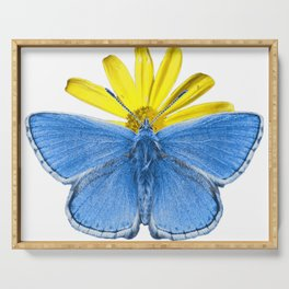 Adonis Butterfly Serving Tray