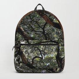 Albuzi Tree Backpack