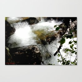 Cascades on Fall Creek in the Weminuche Wilderness, No. 2 of 2 Canvas Print