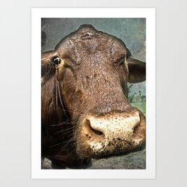 Red Meat Art Print