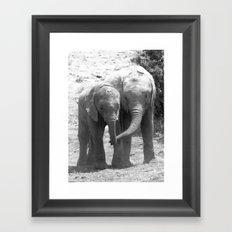 Elephant friends Framed Art Print