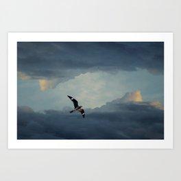 Nighthawk Day Flight Art Print
