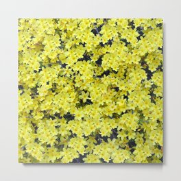 Happy Forsythia Metal Print