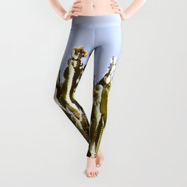 Sticky Cacti Leggings