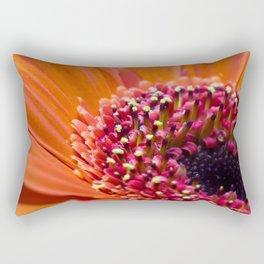 Orange Germini. Rectangular Pillow