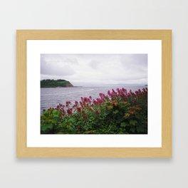 Irish Seaside I Framed Art Print