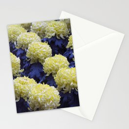 Longwood Gardens Autumn Series 282 Stationery Cards