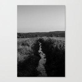 The Seasonal Path Canvas Print