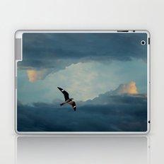 Nighthawk Day Flight Laptop & iPad Skin