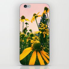 Wild Abandon iPhone & iPod Skin