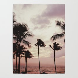 Tropical Palm Tree Pink Sunset Poster