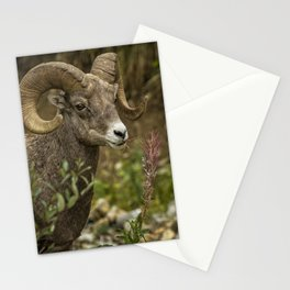 Ram Eating Fireweed cropped Stationery Cards
