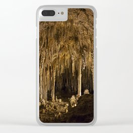 Carlsbad Caverns XVI Clear iPhone Case