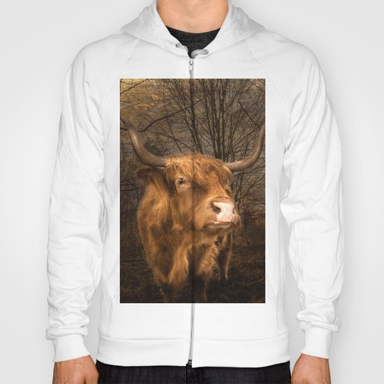 Highland Toffee Coo Hoody